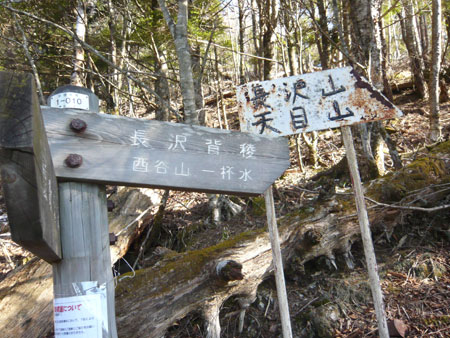 0901MIKKA5imonoki.jpg