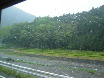 060518雨.jpg