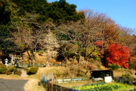 1312kitatakao1.jpg