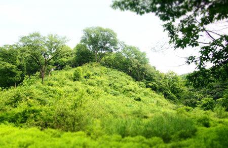1605_okumusagear2_.jpg