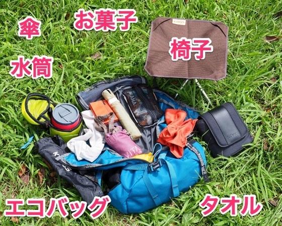 2108_nikou_.jpg