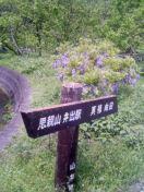 image/morikatu-2006-05-05T10:18:15-1.jpg